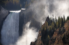 Lower Falls Wonder (Tom Lussier Photography) Tags: usa tree water landscapes waterfall nationalpark falls yellowstonenationalpark yellowstone wyoming d300 nohdrhere usayellowstonenationalpark tomlussier