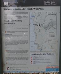 Goldie Bush Walkway in Waitakere