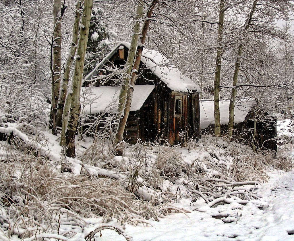 Amazing photo of Snowy Cabin (podolux) Tags: winter snow canon utah ut cabin woods  with #5D4E42 color and 1024x842 pixels