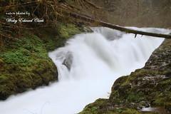 005 (Photos by Wesley Edward Clark) Tags: oregon waterfalls molalla buttecreek scottsmills lowerbuttecreekfalls