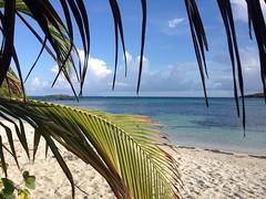 Silver beach, Vieques