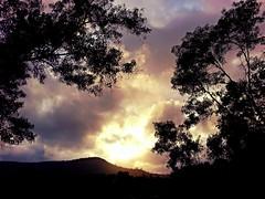 Beautiful Sunset Near Lohagad (JoVivek) Tags: sunset sky orange sun india tree silhouette evening colours maharashtra pune lohagad punephotographer vivekjoshi cimmercialphotography samsunggalaxynote2 vivekjoshiphotography adiraimaging