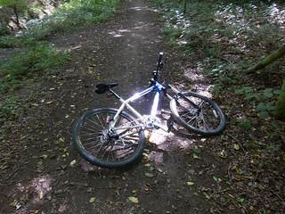 dappled bike