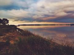 257/365 greifswald sunset #365 #dailygram #dailybestpic #picoftheday #photooftheday #shotoftheday #dailyshot #art #ig_europe #iphoneonly  #statigram #contestgram #vscocam #geocaching #instabest #instagood #instagreat #instamood #greifswald #sunset #dawn # (Mathias Kuse) Tags: sunset sea green art beach grass landscape dawn sonnenuntergang geocaching baltic 365 ostsee fischer greifswald dailyshot wieck iphone photooftheday picoftheday bodden shotoftheday dunset iphoneonly instagram dailygram instagreat statigram instagood instamood originalfilter instabest vscocam contestgram iggermany uploaded:by=flickrmobile igworldclub igeurope dailybestpic flickriosapp:filter=original