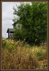 Peeking Through Trees (the Gallopping Geezer '4.8' million + views....) Tags: house building abandoned home canon closed decay michigan farmland structure faded vacant derelict deserted decayed geezer dwelling tonemap