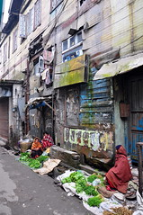 India - West Bengal - Darjeeling - Street Life - 47 (asienman) Tags: india darjeeling westbengal asienmanphotography