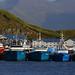 Dutch Harbor trawlers