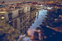 Paris puddle porn