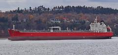 STI Emerald (Jacques Trempe 2,530K hits - Merci-Thanks) Tags: river ship quebec stlawrence stlaurent emerald fleuve navire stefoy