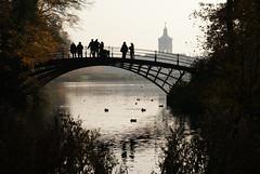#Flickr12Days (RayKippig) Tags: bridge autumn berlin fall germany deutschland herbst brcke schloss teich schlosspark charlottenburg schlossgarten flickr12days