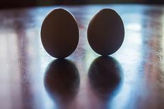 A balanced egg! (lorenzofernandeznixon) Tags: food reflection chicken contrast circle mirror couple egg reflect sphere eggs balance rooster mirrorimage lunar balanced oval alike