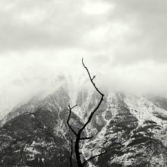 la pista nera (enki22) Tags: white abstract black nature landscape minimalism enki22