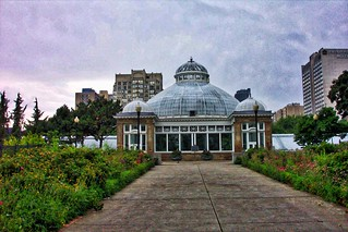 Toronto ~ Ontario ~ Allan Gardens Conservatory ~ Palm House