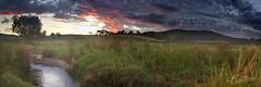 A Stream and a Sunrise || Central Tablelands (edwinemmerick) Tags: longexposure sky panorama cloud grass creek photoshop sunrise canon landscape stream stitch hill australia dos le nsw 7d slowshutter edwin cs3 centraltablelands emmerick edwinemmerick