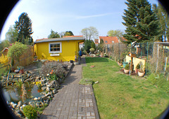 Unser Garten (01.04.2014) (Gnter Hentschel) Tags: d50 germany garden deutschland nikon e