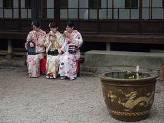 The Taste of Tea [explored] (kasa51) Tags: people girl japan tokyo japanesegarden tea candid kimono 着物 和服 日本庭園 茶の味 小堀遠州 japanesetraditionalclothes gardenoftemple 伝法院庭園 panasoniclumxgvario1235f28