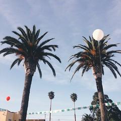 (m. wriston) Tags: california salinas iphone vscocam mwriston