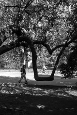 X100-05-31-14-31 (a.cadore) Tags: nyc newyorkcity centralpark candid fujifilm x100 23mm fujifilmx100 23mm35mmequivalent