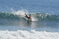 DSC_0076 (aliciadesign) Tags: surf whales bigisland honolii