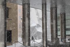 IMG_1423 (tkolos) Tags: winter cambridge white snow storm boston canon marcus mit massachusetts blizzard massachusettsinstituteoftechnology 70d bosnow