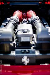 Ferrari F430 (cescolp) Tags: california italy toronto cars car sport mercedes performance engine engineering f1 ferrari racing mclaren porsche automatic enzo cylinder bmw modena audi lamborghini luxury scuderia accelerator transmission awd fwd exhaust sportscar racingcar f430 intake testarossa f40 v12 f50 prancinghorse ferrarif430 luxurycar scaglietti topgear highperformance cavallinorampante rwd cavallino itailan enzoferrari tiptronic scuderiaferrari ferraricailfornia