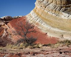 _JLW5558 (Backpackjoe) Tags: coyote arizona landscape nikon north northernarizona northern buttes pariacanyon d610 northcoyotebuttes whitepocket nikond610