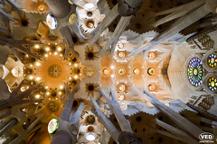 Ceiling of the Sagrada Familia (Van Esch Design (VED)) Tags: barcelona city travel light building church architecture spain cathedral stainedglass ceiling gaudi sagradafamilia