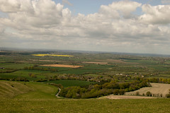 WHH-3 (liamworrall) Tags: england horse white hill oxfordshire