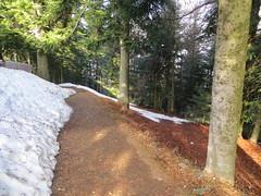 2016-032914 (bubbahop) Tags: switzerland hike locarno 2016 cardada europetrip33