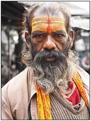 Kolkata - Sadhu (sharko333) Tags: voyage street travel portrait people india man beard asia asien olympus asie kolkata indien sadhu reise em1 kalkutta  westbengalen