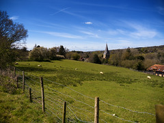 Shere (martin_rees) Tags: church field fence landscape spring village sheep surrey nik guildford shere colorefex