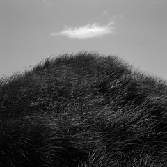 Dune Grass and Cloud, Oregon Coast (austin granger) Tags: cloud film beach grass oregon coast wind dunes mound correspondence hillock gf670 austingranger