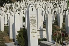 VCTIMES DE SARAJEVO (Bsnia i Herzegovina, agost de 2012) (perfectdayjosep) Tags: guerradelsbalcans sarajevo bsniaiherzegovina bosnieiherzegovine balcans balcanes balkans perfectdayjosep cemetery cementiridesarajevo