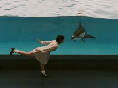... (Takashi -Ueno) Tags: portrait pentax dolphin handheld  pentax645d