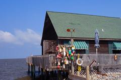 Along the bay, Avalon, NJ (neil.gilmour) Tags: ocean blue sea house water bay fishing nj shore pilings avalon saltwater