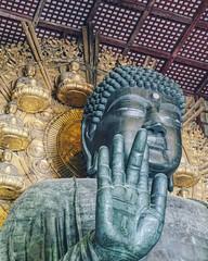 #kyoto #nara #todaijitemple #buddha #temple #shrine #sculpture #relics #nara #inari #japan (7ipon4) Tags: sculpture japan temple kyoto shrine inari buddha nara relics todaijitemple