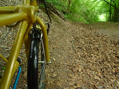 Riding a Sunken lane (cycle.nut66) Tags: leica brown black green leaves bicycle wheel yellow lumix suspension space small hill front full hills panasonic summicron lane frame sunken forks 27 chiltern moulton tsr lx3 tsr27 bacombe
