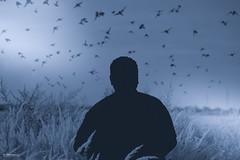 Birds Meet Color (K.Marinovi - Artist) Tags: blue light sky people man color art monochrome field birds silhouette mystery photoshop wonderful photo nice nikon artistic outdoor surreal nikkor karlo lightroom marinovic