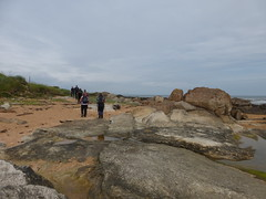 stone (Brian Cairns) Tags: saintandrews cambo fifecoastalpath kingsbarns brianbcairns therockandspindle buddoroack