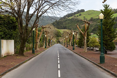 Leading Lines (Steve Vallis) Tags: road portugal lines point vanishing leading azores