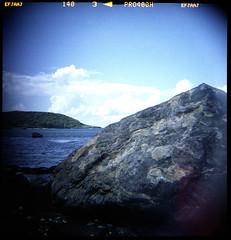 (Bud McLoughlin) Tags: 120film squareformat dianaf fujicolorpro400h