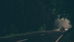 Fahrt ins Licht (sfp - sebastian fischer photography) Tags: auto road mist nature wet car rain fog forest landscape haze nebel natur foggy rainy landschaft wald regen nas odenwald strase wilhelmsfeld waldstrase