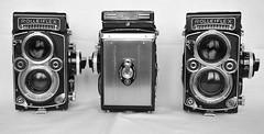 rolleiflex modèle F (THE LAST PHOTOGRAPHIES) Tags: rolleiflex rolleiflex35f rolleiflex35fplanar rolleiflex28fplanar dosplanfilmpourrolleiflexmodèlef