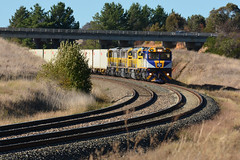 "Here's ""The Trump"" (Jungle Jack Movements (ferroequinologist)) Tags: trip railroad chicago car station electric set train tren pull la highway die power carriage diesel authority traction performance australian platform engine eisenbahn rail railway loco australia pickup down run quad el junction class line cm freeway nsw 1105 newsouthwales locomotive trump load hume treno engineer freight appliance grunt bogie kw logistics locos ballast leasing 1101 yass the 3313 livery qube 列車 1108 электровоз gunzel traîne stabled nswgr nswrailways nswr gunzelling 内燃机车 gunzeller 培养 cm3313"