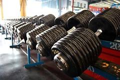 Entrenamiento con pesas y sus cambios hormonales (revistaeducacionvirtual) Tags: fitness gym gimnasio msculos culturismo testosterona desarrollomuscular fuerzamuscular ejerciciosfisico hormonadecrecimiento