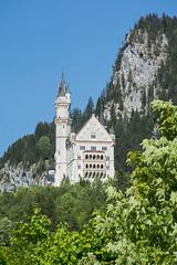 Neuschwanstein (grasso.gino) Tags: castle germany bayern deutschland bavaria nikon neuschwanstein schloss hohenschwangau d5200