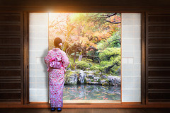 Japanese garden (Patrick Foto ;)) Tags: park door old travel autumn red people woman house fish plant flower building tree green tourism home window nature beautiful beauty japan wall architecture lady female vintage garden asian outdoors japanese tokyo design leaf maple kyoto asia view background interior room traditional famous culture landmark zen round fancy koi through concept