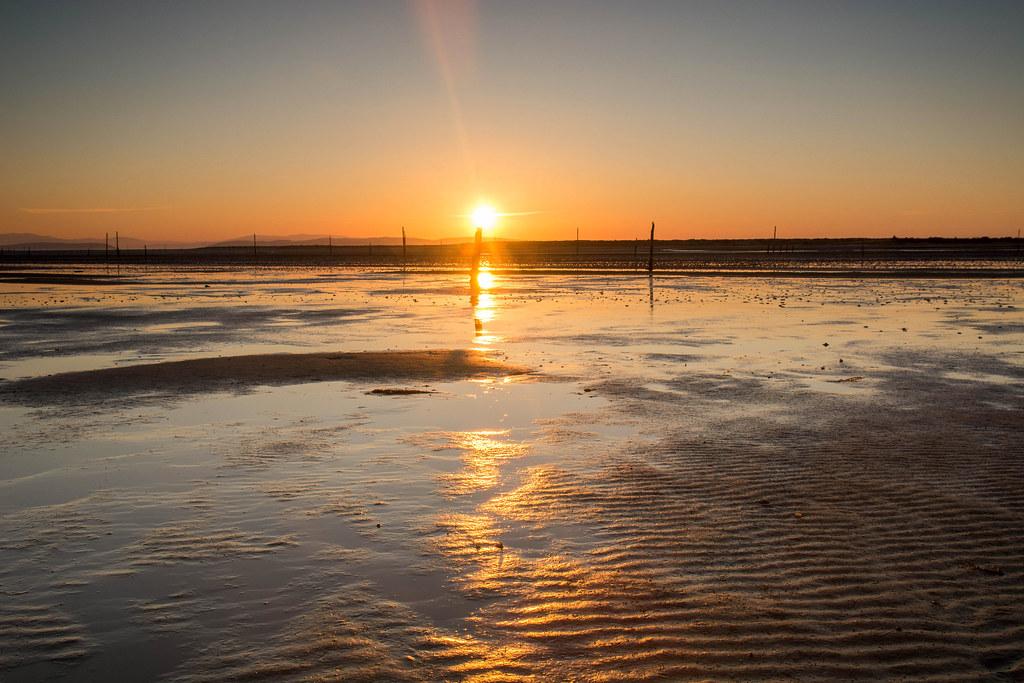 Culbin Sands 1