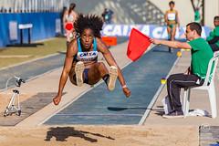 GP Brasil Caixa de atletismo 19jun2016-687 (plopesfoto) Tags: salto esporte martelo gp atletismo atleta vara sobernardodocampo olimpiada medalha competio barreiras arremesso esportista 800metros 100metros cbat arenacaixa