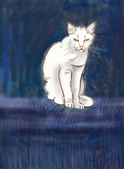 Whitty (Isaszas) Tags: digitalart graphisme palettegraphique cat katze chat chatblanc
